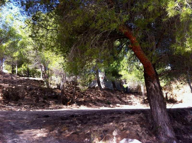 Building plot in Sierra Altea
